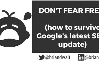 don't fear fred - new google seo update