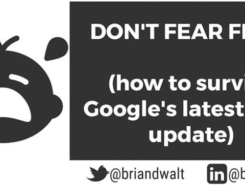 Don't Fear Fred! (Google's Latest SEO Update)